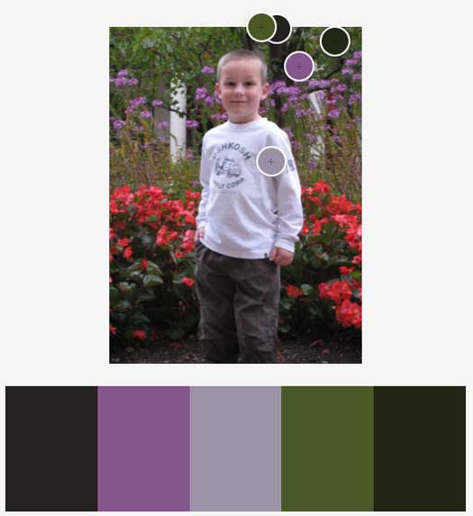 Adobe Color: Dark Color Scheme