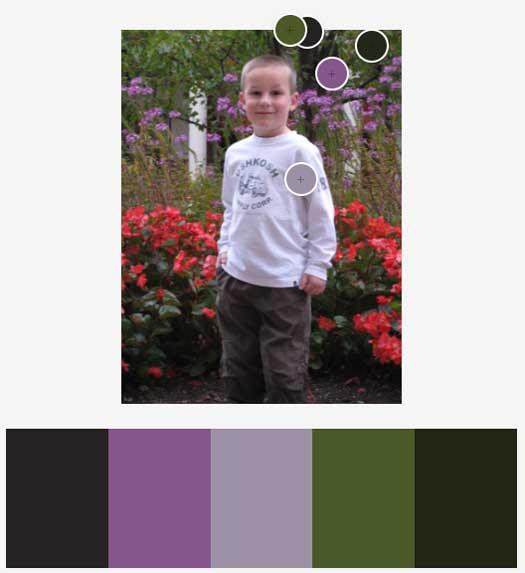 Adobe Color: Dark Color Scheme