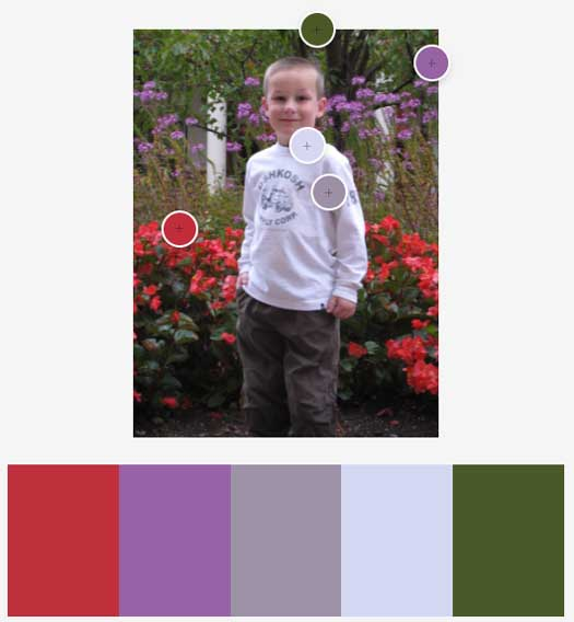 Adobe Color: Muted Color Scheme