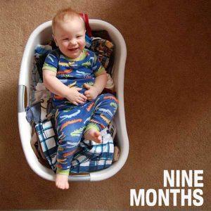Laundry Basket Growth Chart